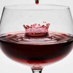 Elegir un buen vino.